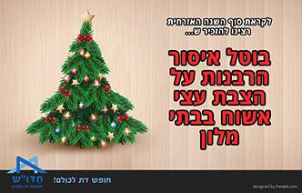 בוטל איסור הרבנות על הצבת עצי אשוח בבתי מלון